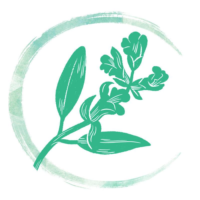 Cindy Radenac | Accompagnement bien-être par les plantes