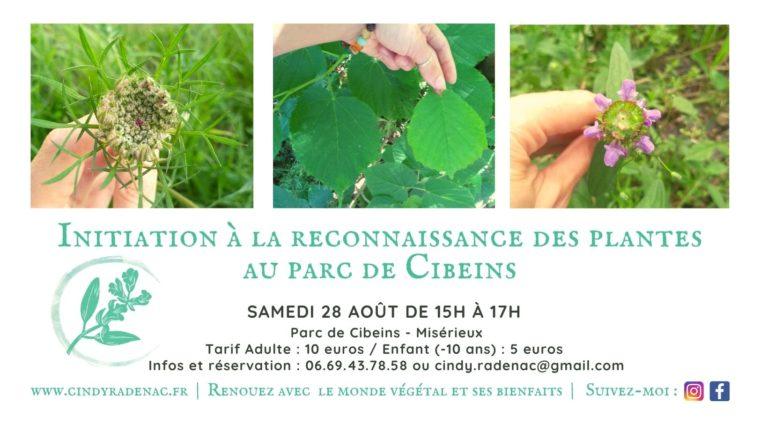Initiation à la reconnaissance des plantes