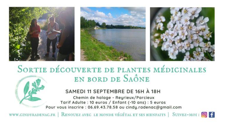 Sortie découverte de plantes médicinales Reyrieux