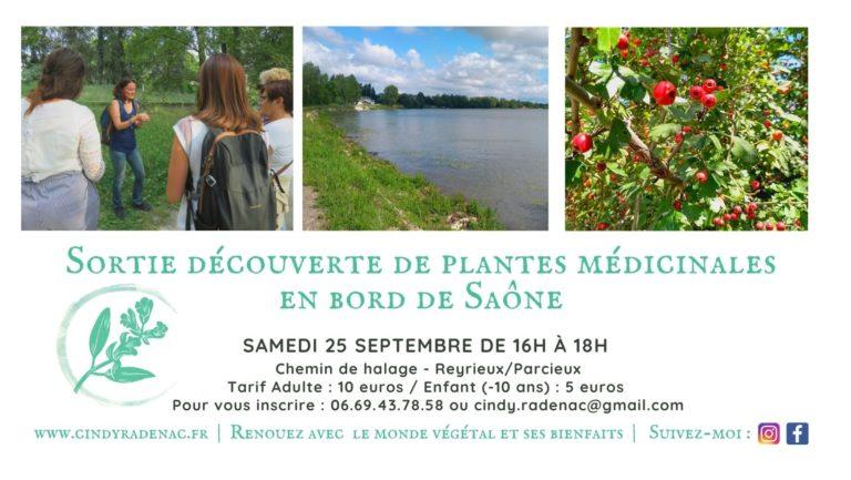 Sortie découverte de plantes médicinales Reyrieux/Parcieux